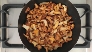 YUMMY_Pasta-Chanterelle_Blog_2